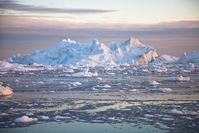 Arctic-Trump-1.jpg