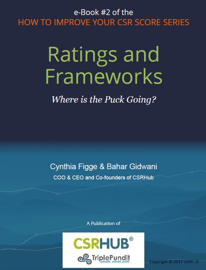 CSRHub e-Book 2 Ratings and Frameworks.jpg