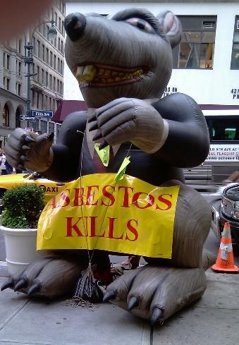 Asbestos Rat.jpg