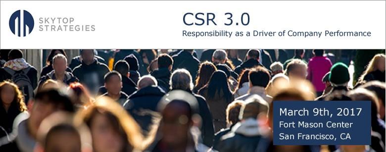 Skytop Strategies CSR 3 b.jpg